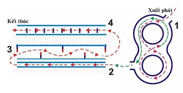 Hướng dẫn thi thực hành lái xe hạng a1