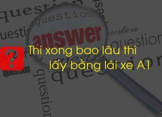hoi-dap-thi-xong-bao-lau-thi-lay-bang-lai-xe